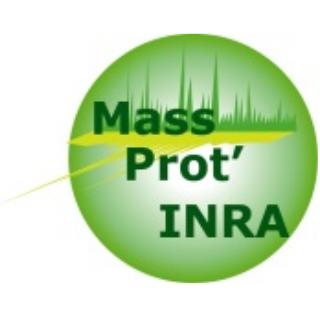 logo MassProt'INRA